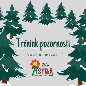 DDM ASTRA dětem: Trénink pozornosti - Les a jeho obyvatelé