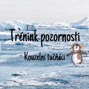 DDM ASTRA dětem: Trénink pozornosti - Kouzelní tučňáci