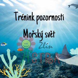 DDM ASTRA dětem: Trénink pozornosti - mořský svět