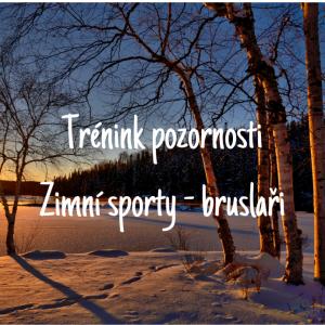 DDM ASTRA dětem: Trénink pozornosti -Zimní sporty