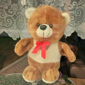 Pojďme hledat medvědy