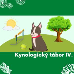 31 Agility IV - kynologický (se psy)