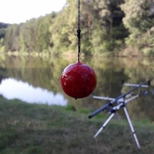 Rybí tábor (2).jpg