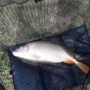 Rybí tábor (3).jpg